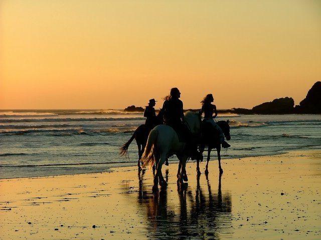 Vivere in Costa Rica - Passeggiata a cavallo