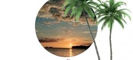 Warum Nach Costa Rica Auswandern